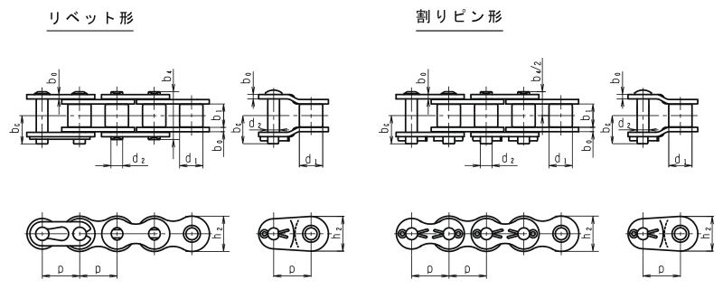 ind-roller-chain